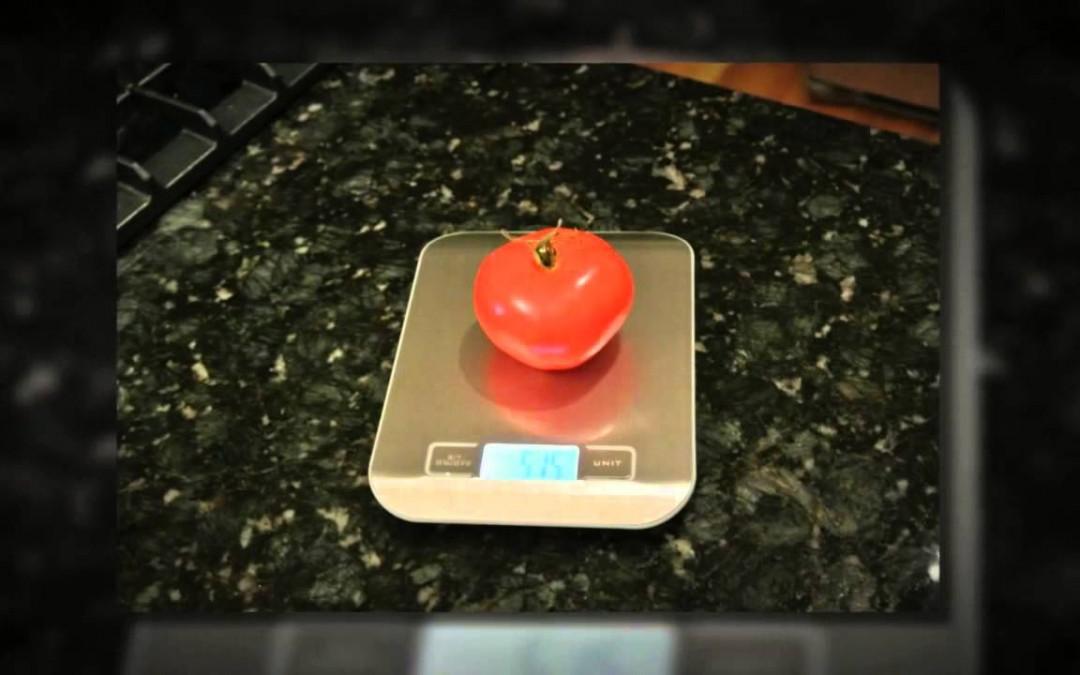 Diabetic Food Scale