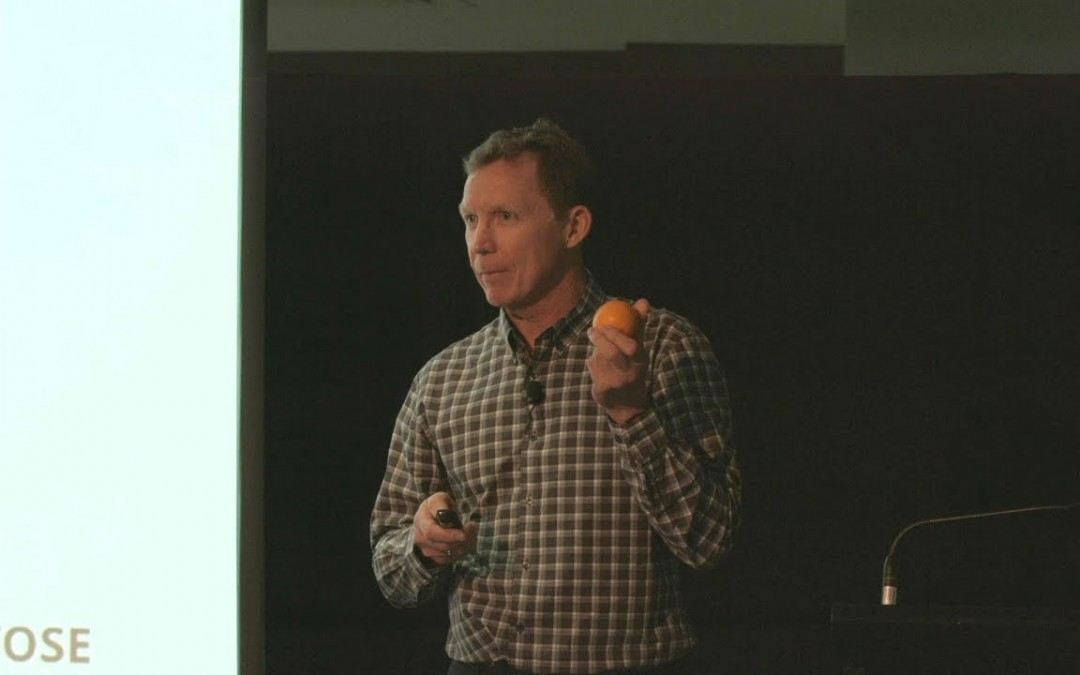 Dr. Gary Fettke – 'Is Fruit Good or Bad For You?'