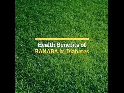 Health benefits of Banaba for Diabetes