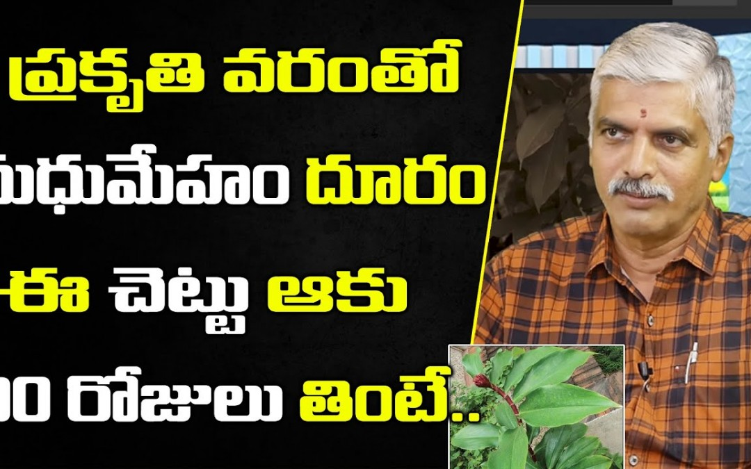 Costus Insulin Plant Health Benefits in Telugu | V Purushothama about Diabetes |Sumantv OrganicFoods