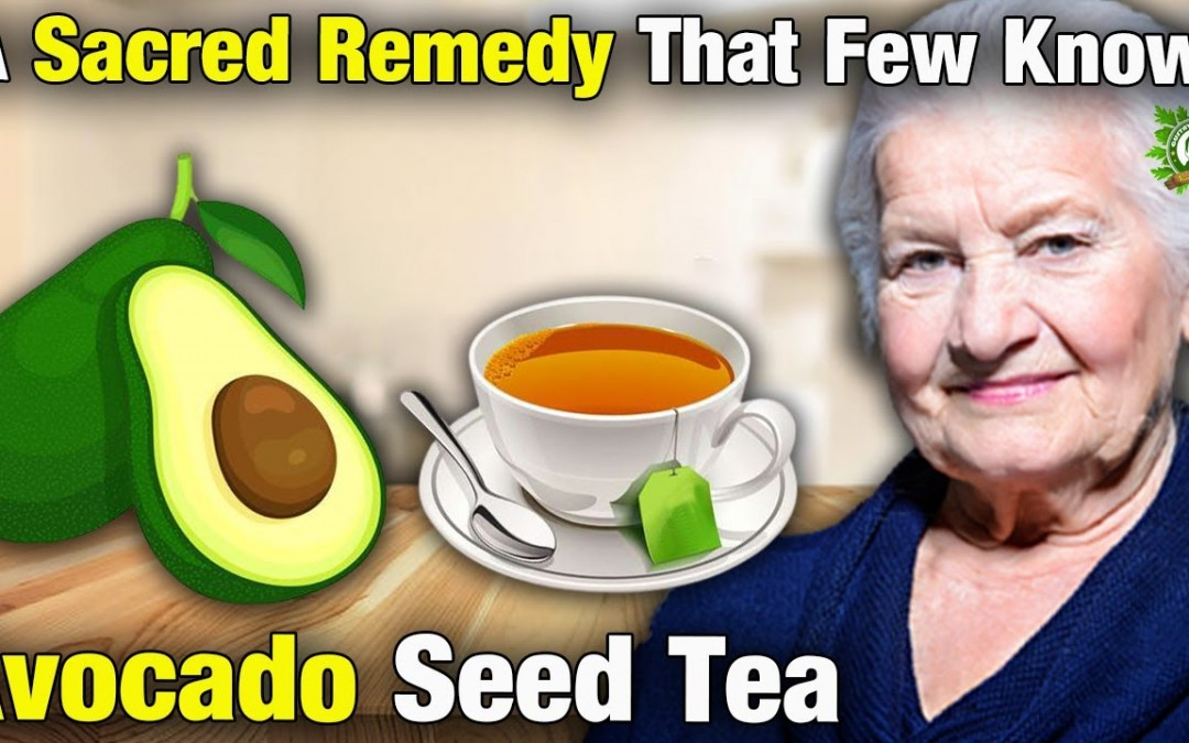 Avocado Seed Tea… A Sacred Natural Remedy that few know!