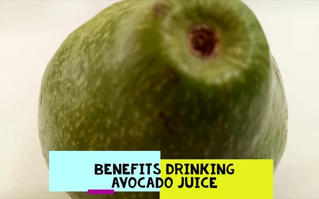 Benefits drinking avocado juice