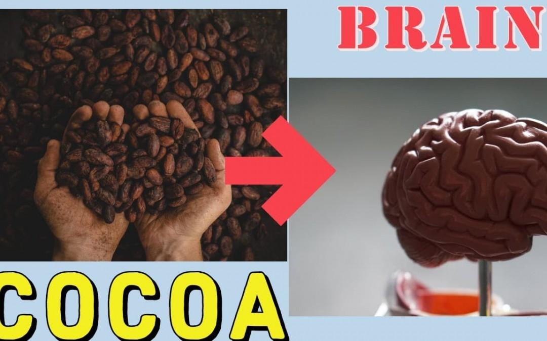 Cocoa Health Benefits For Brain Health, Blood Pressure, Type -2 Diabetics, Diabetes & Nutrients.