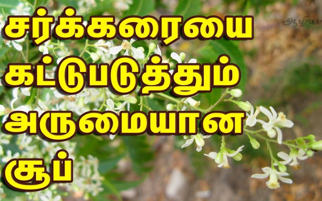 Diabetic Recipes In Tamil   Veppam Poo Soup   Neem Flower Soup
