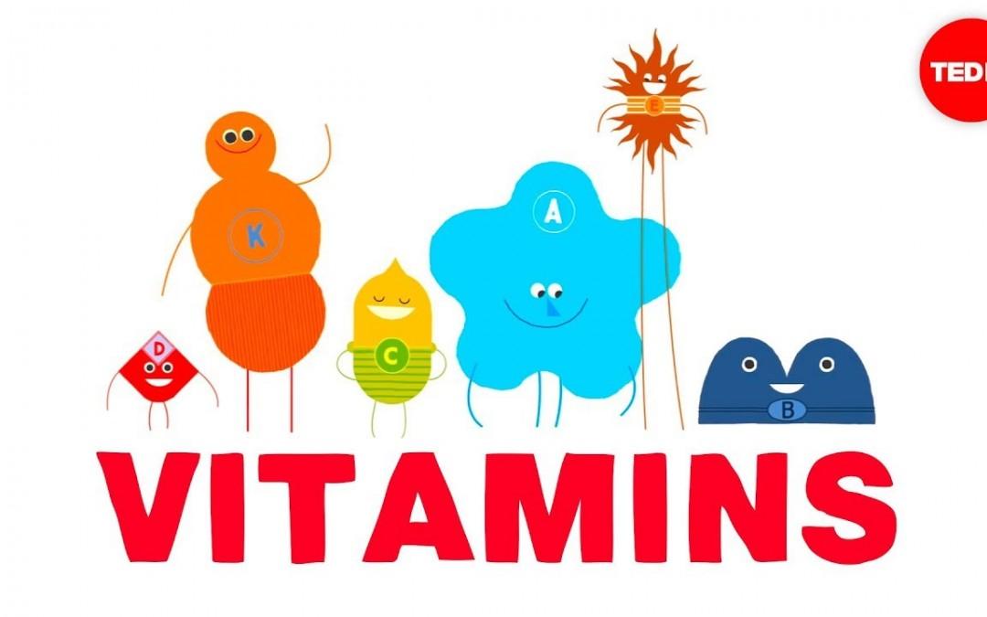 How do vitamins work? – Ginnie Trinh Nguyen