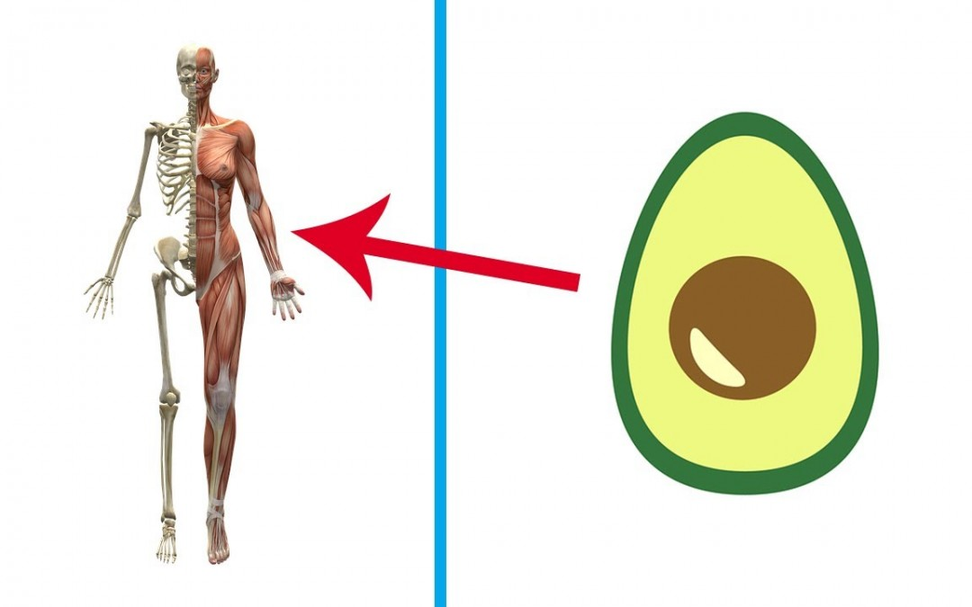 Do not Eat Avocados before you know these magical benefits of this fruit