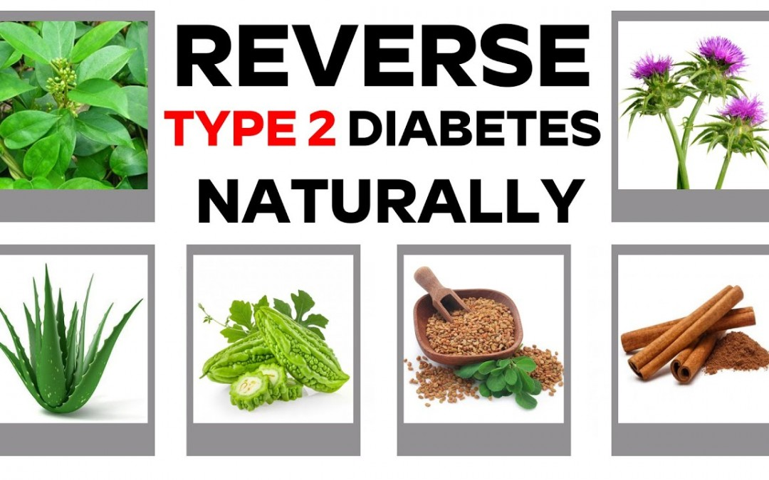 REVERSE TYPE 2 DIABETES NATURALLY   7 HERBS FOR CURE TYPE 2 DIABETES   free diabetes