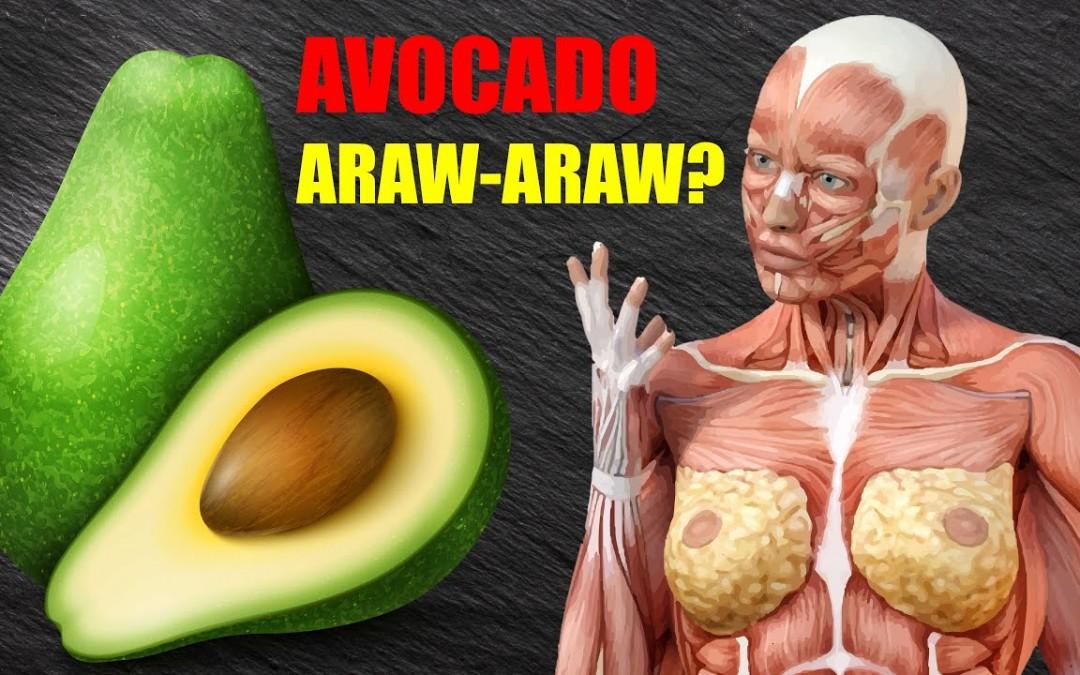 Avocado: Ano Ang Mangyayari kapag KUMAIN KA NG AVOCADO ARAW ARAW?