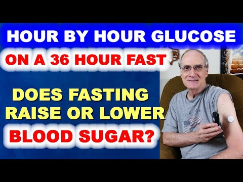 Hour by Hour Glucose Readings on My 36-Hour Fast
