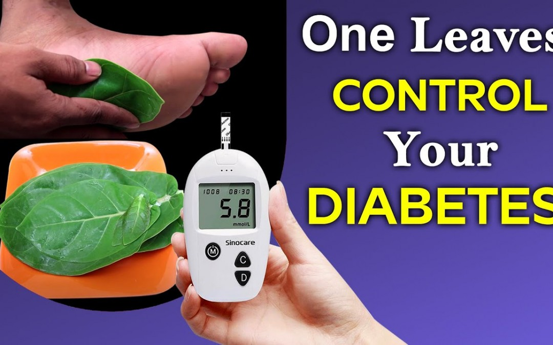 One Green Leaves Control Your Diabetes   Health and Beauty
